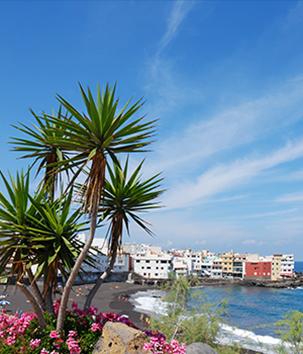 Wyspy KanaryjskieWyspy Kanaryjskie to gwarancja udanego urlopu o każdej porze roku! U nas znajdziesz szeroki wybór starannie wybranych apartamentów i hoteli.