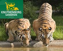 Knuthenborg SafariparkVelkommen til Nordeuropas største safaripark. Her færdes dyrene frit omkring så besøgende kan komme helt tæt på og klappe dyrene. Vælg selv om du vil gå, køre bil eller cykle i parken.   Åbningstider: April til og med oktober.