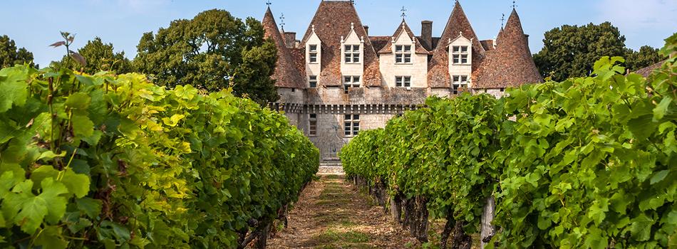 Mad- og vingårde
