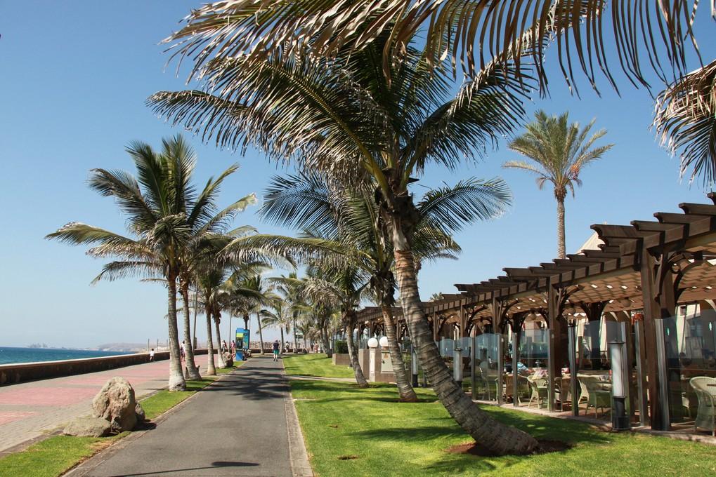 Warme WinterferienReisen Sie mit Sembo der Sonne entgegen. Dubai, Thailand oder Mexico.