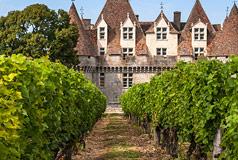 Speisen- und WeinkellereienWeingut, wo Wein und Speisen aus dem hauseigenen Garten kommen.