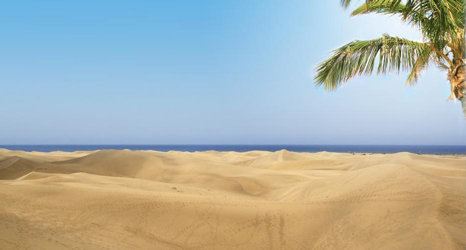 Kanarieöarna Varma, sköna Kanarieöarna med Gran Canaria, Lanzarote, Teneriffa och La Gomera.