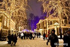 Glitrende GöteborgHøj julestemning udloves! 5 millionerglitrendejulelys på Liseberg, hver weekend er der julemarked i Haga- og Kronhusboderne. Jul i Liseberg: 16/11-30/12.
